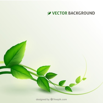 Plant achtergrond