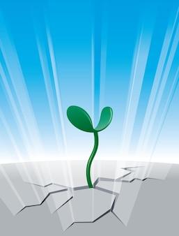 Plant groeit uit de scheur in de grond