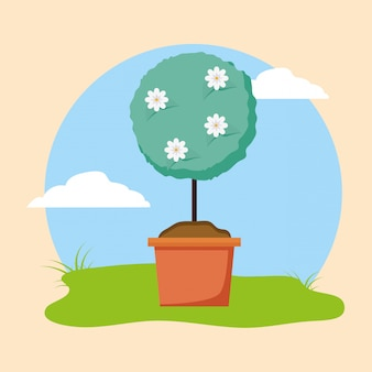 Plant met bloemen in de tuin