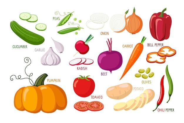 Plantaardige set vegetarische gezonde voeding vectorillustratie verse biologische heerlijke veganistische menu