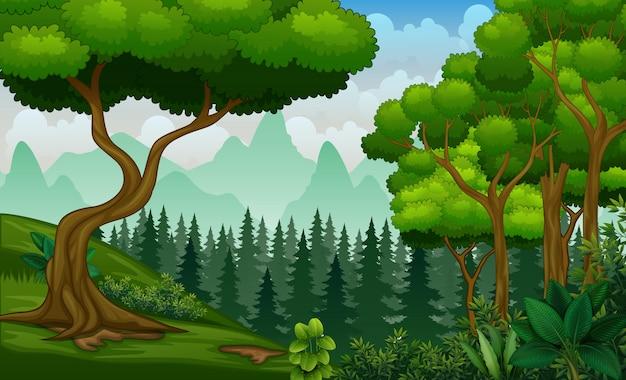 Planten en bomen op de natuur landschap