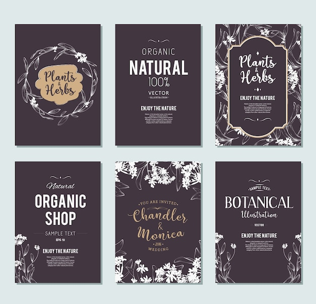 Planten en kruiden banners instellen. element voor ontwerp of uitnodigingskaart