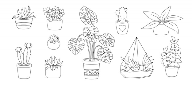 Planten en vetplanten, ingemaakte keramische platte lijnenset. zwarte lineaire cartoon huis bloem. kamerplanten, cactus, monstera bloempot. stijlvolle interieurcollectie. geïsoleerde illustratie