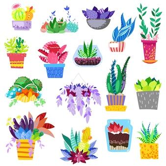 Planten in bloempotten ingemaakte kleurrijke bloemrijke kamerplanten voor interieurdecoratie met botanische collectie bloemencactussen in potten en kleurenbloemen illustratie op witte achtergrond