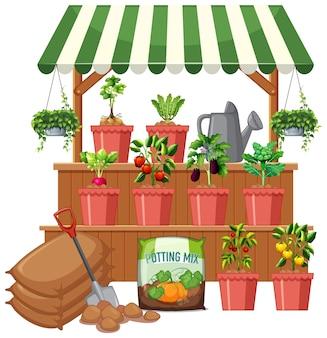 Plantenwinkel met veel groenteboom op witte achtergrond