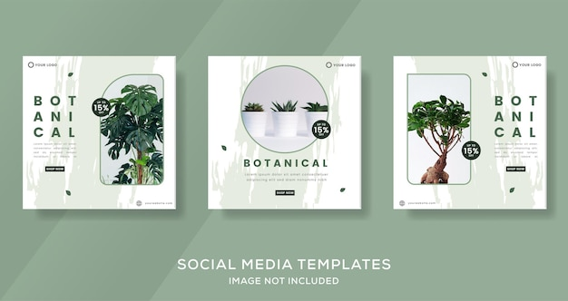 Plantkunde-bannersjabloon met groene kleur voor sociale media instagram post premium vector