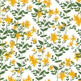 Plantkunde en bloemen gebladerte en bloesem vector