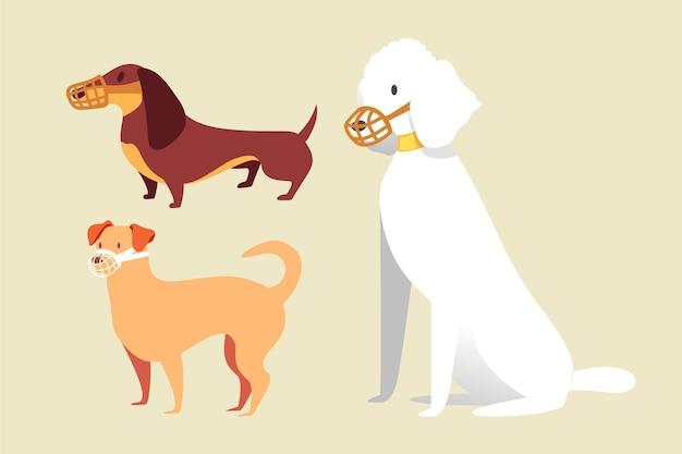 Plat gemuilkorfde honden pack