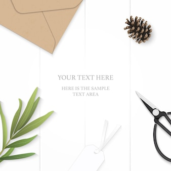 Plat lag bovenaanzicht elegante witte samenstelling papier dragon blad dennenappel kraft envelop tag en vintage metalen schaar op houten achtergrond.