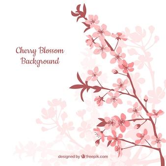 Platte achtergrond met sakura