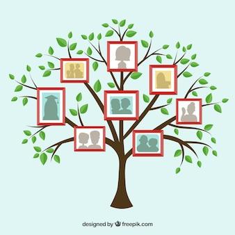 Platte boom met frames op de muur