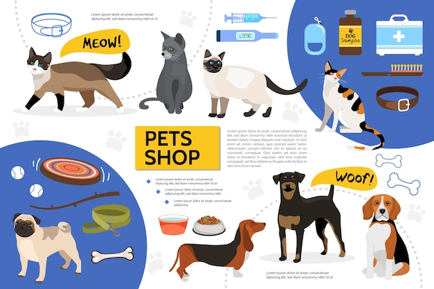 Platte dierenwinkel infographic sjabloon