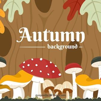 Platte herfst achtergrond met champignons