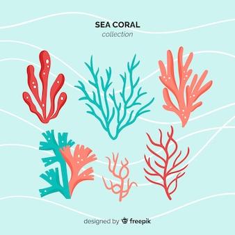 Platte koraalcollectie