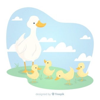 Platte moedereend en kuikens
