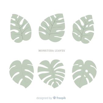 Platte monstera bladeren