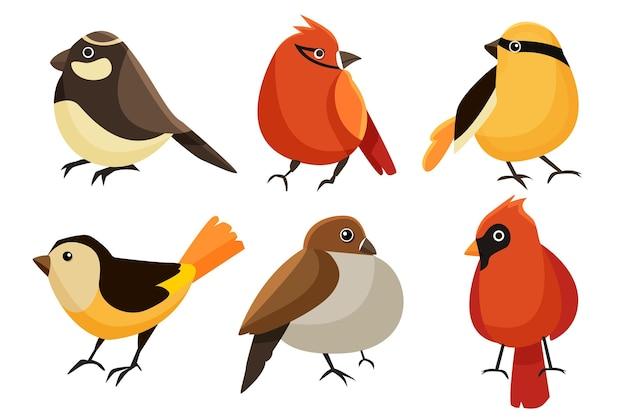 Platte ontwerp kleurrijke robin-collectie