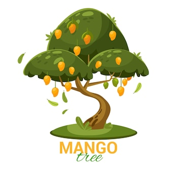 Platte ontwerp mangoboom met fruit en bladeren geïllustreerd