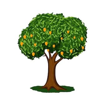 Platte ontwerp mangoboom met fruit illustratie