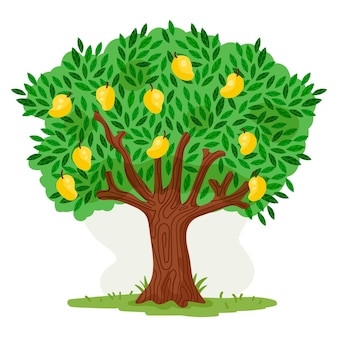 Platte ontwerp mangoboom
