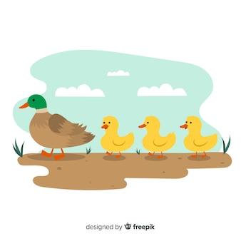 Platte ontwerp met moeder eend en kuikens
