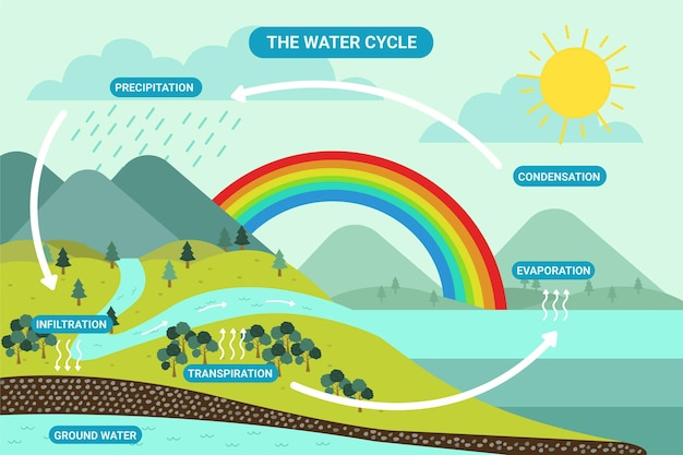 Platte ontwerp natuur watercyclus