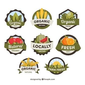 Platte selectie van grote platte etiketten van biologisch voedsel