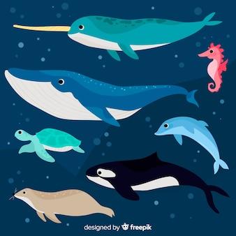 Platte verzameling mariene levenskarakters