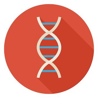 Platte wetenschap en geneeskunde dna cirkel icoon met lange schaduw. terug naar school en onderwijs vectorillustratie. kleurrijke biologie natuurkunde en onderzoeksobject. medisch teken