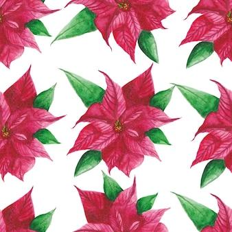 Poinsettia aquarel patroon achtergrond