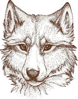Pointillisme tekening van wolf