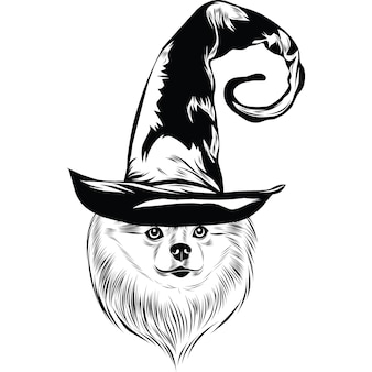 Pommeren hond in heksenhoed voor halloween