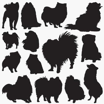 Pommerse hond silhouetten