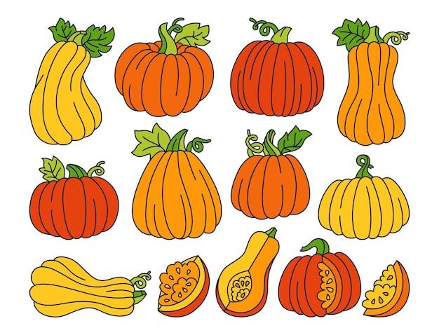 Pompoen cartoon set doodle rijpe herfst verschillende pompoenen halloween of thanksgiving day