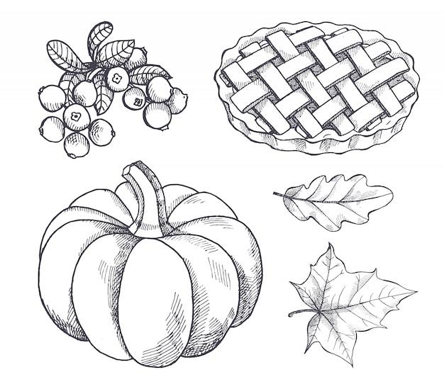Pompoen en gebakken taart cranberry schetsen