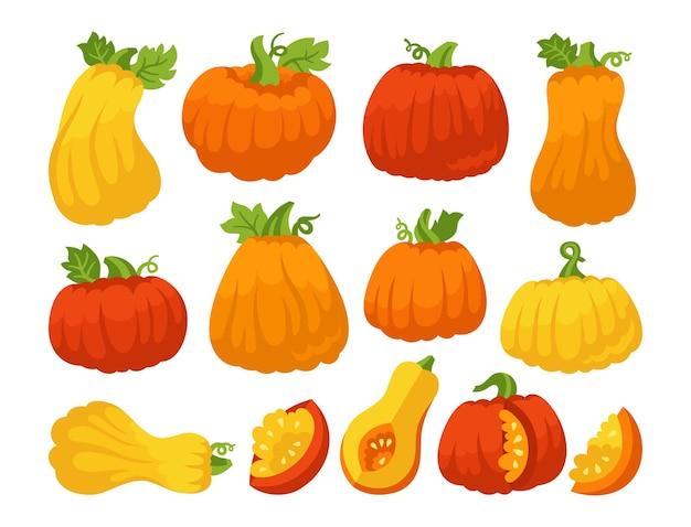 Pompoen platte cartoon set rijpe herfst pompoenen geheel of plak halloween of thanksgiving day symbool