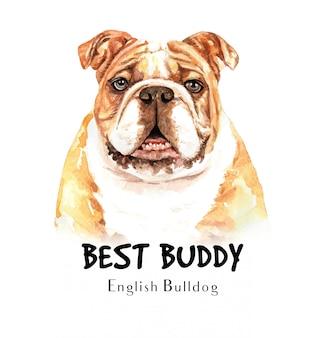 Portret bulldog