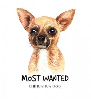 Portret chihuahua hond voor afdrukken