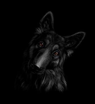 Portret van een duitse herdershond op een zwarte achtergrond. vector illustratie