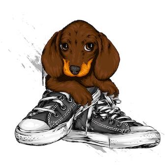 Portret van een hond met sneakers