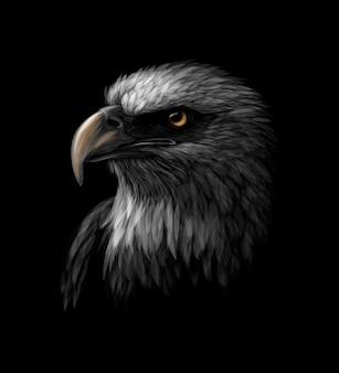 Portret van een hoofd van een amerikaanse zeearend op een zwarte achtergrond. vector illustratie