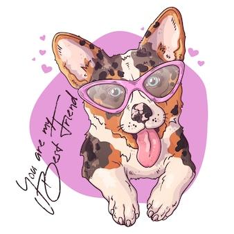 Portret van een schattige corgi hond.