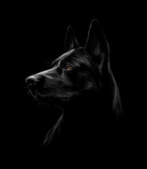 Portret van een zwarte herdershond op een zwarte achtergrond. vector illustratie