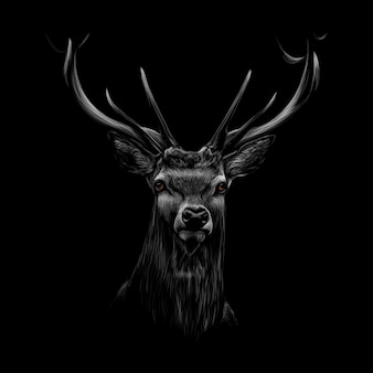 Portret van het hoofd van een hert op een zwarte achtergrond. vector illustratie