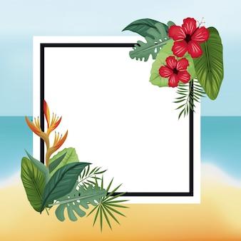 Poster hibiscus en paradijsvogel strand bladeren palm