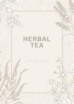 Poster sjabloon versierd met bloeiende wilde weidebloemen en bloeiende kruiden hand getekend met contourlijnen op lichte achtergrond.
