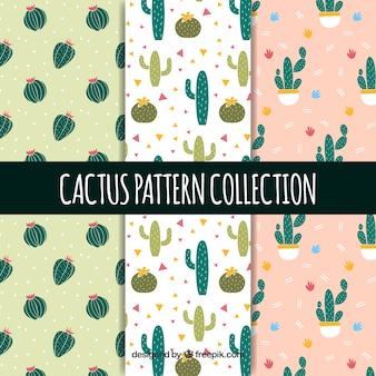 Prachtig pakket van cactuspatronen