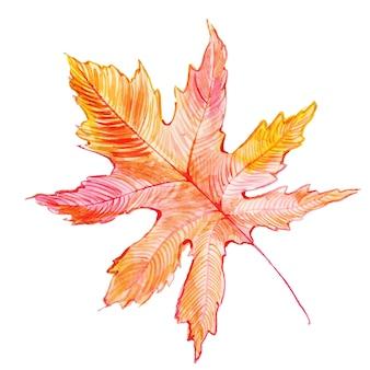 Prachtige aquarel herfstblad