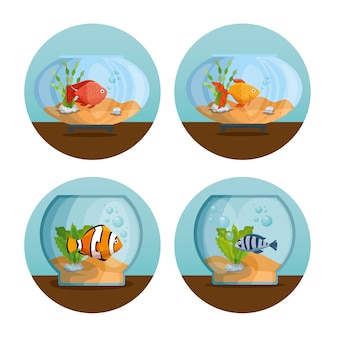 Prachtige aquariums pictogrammen instellen