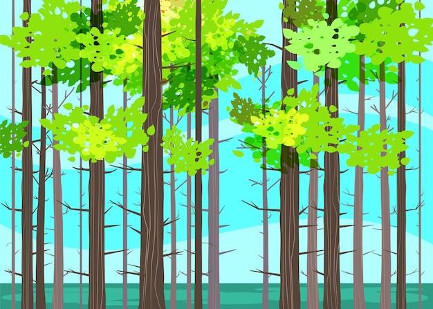Prachtige lente bosbomen, groen gebladerte, landschap, struiken, silhouetten van stammen, horizon